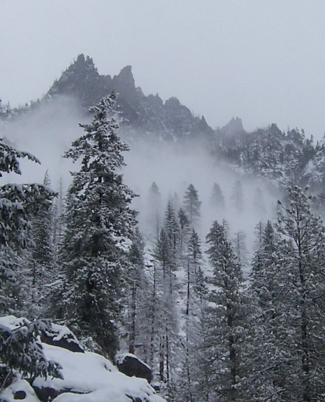 Cascades In Winter