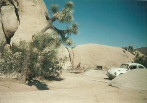 Camping at the Joshua Tree Monument