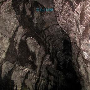 Cilium_Cave 2