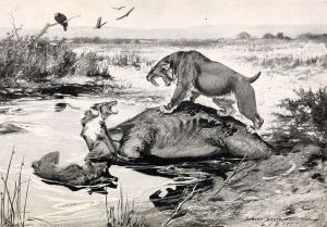 1024px-Smilodon_and_Canis_dirus