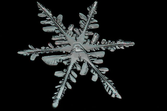 Snowflake_Detail